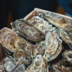 Austernschalenpulver