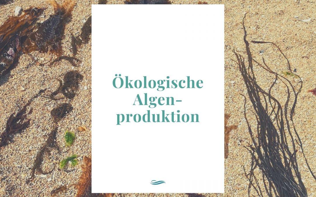 Meeresalgen in Bioqualität